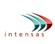 logo intensas networks