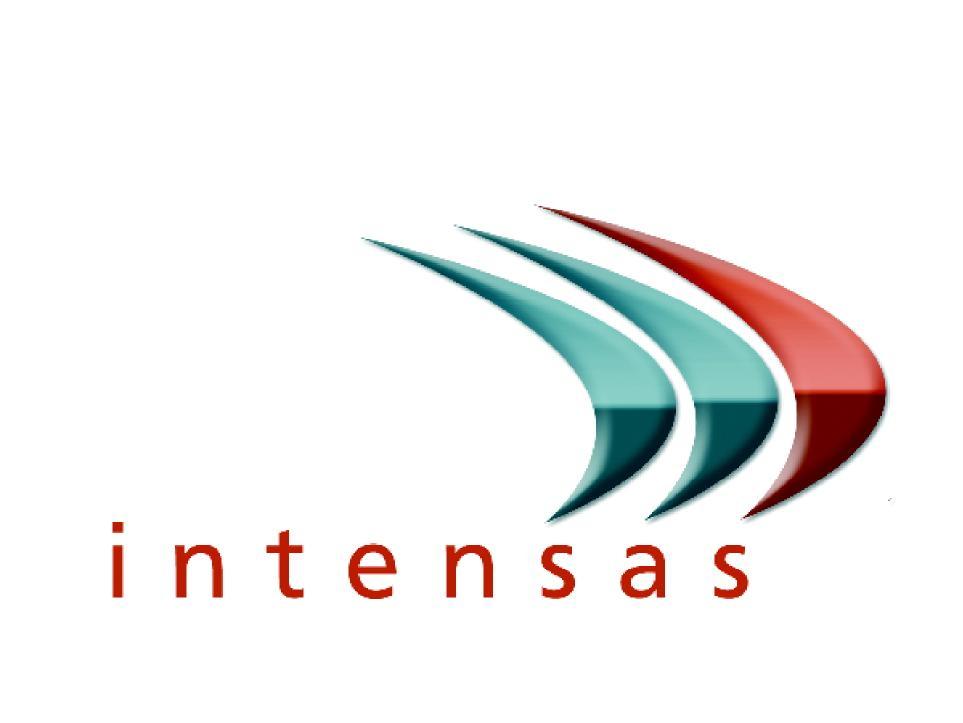 logo intensas networks